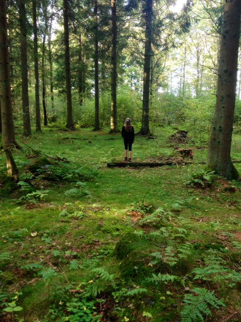 skog Wilma
